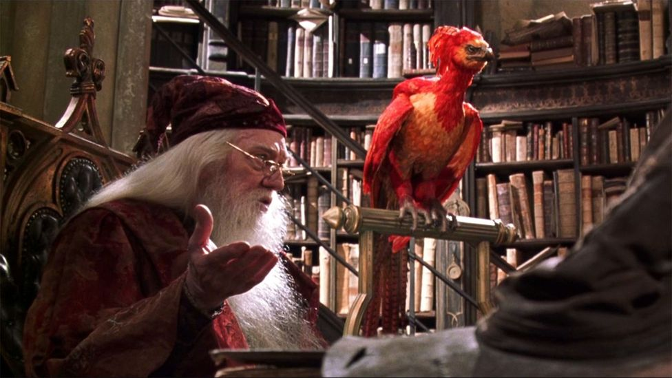 The phoenix that Dumbledore keeps in his office at Hogwarts can be traced back to ancient myths and appears in the histories of Tacitus and Herodotus (Credit: Warner Bros)