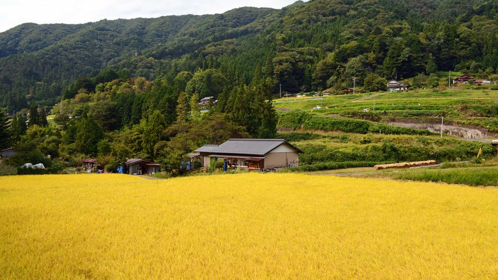 It is easy here to imagine Japan as it looked in centuries past (Credit: Bill Fink)