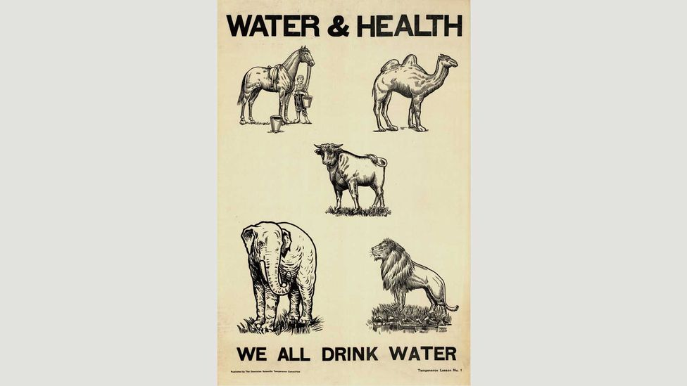 During the US temperance movement, citizens were encouraged to embrace 'tee-totallism' (Credit: Alamy)