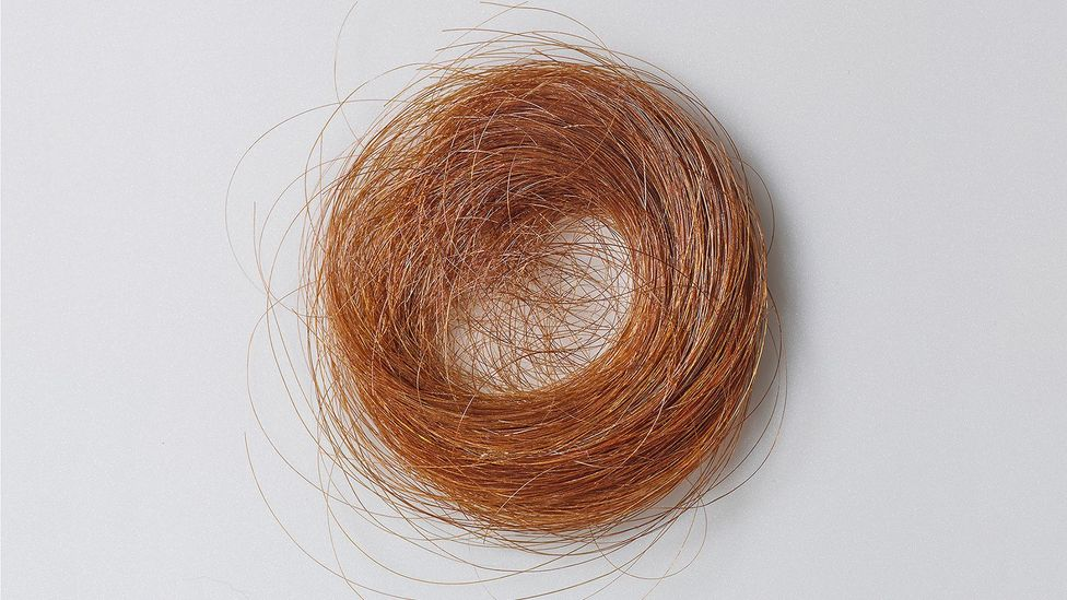 A lock of the poet's hair is among the personal effects, manuscripts and other items currently on display at the Morgan Library in New York City (Credit: Amherst College Archives)