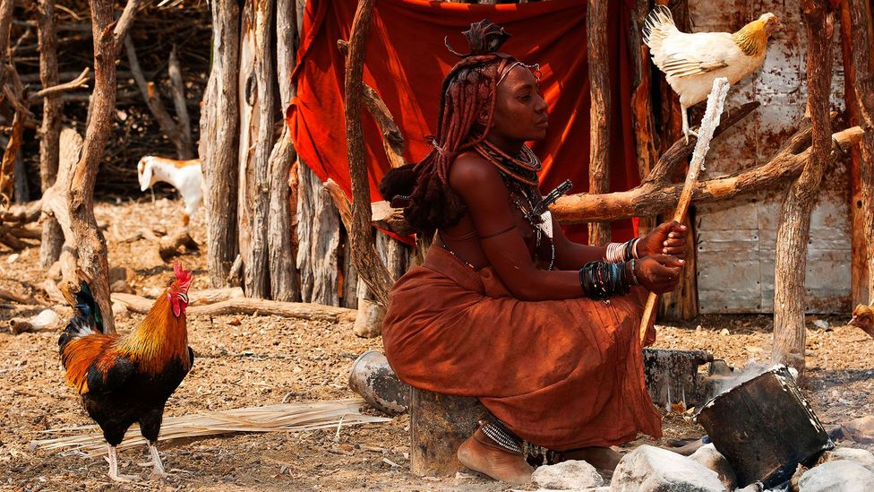 Himba people living their traditional life appear to have remarkable visual concentration, an ability to stay focused on the smallest details (Credit: Alamy)