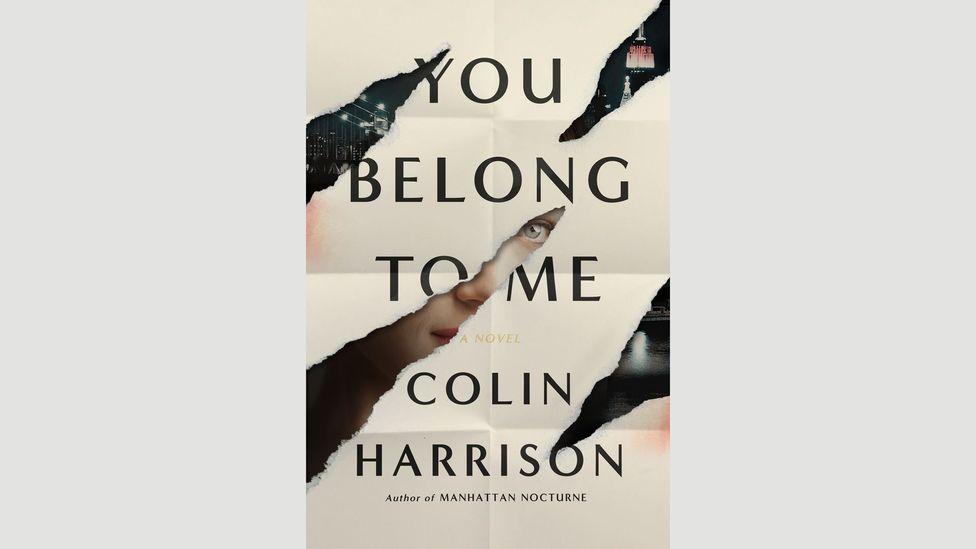 Colin Harrison, You Belong to Me