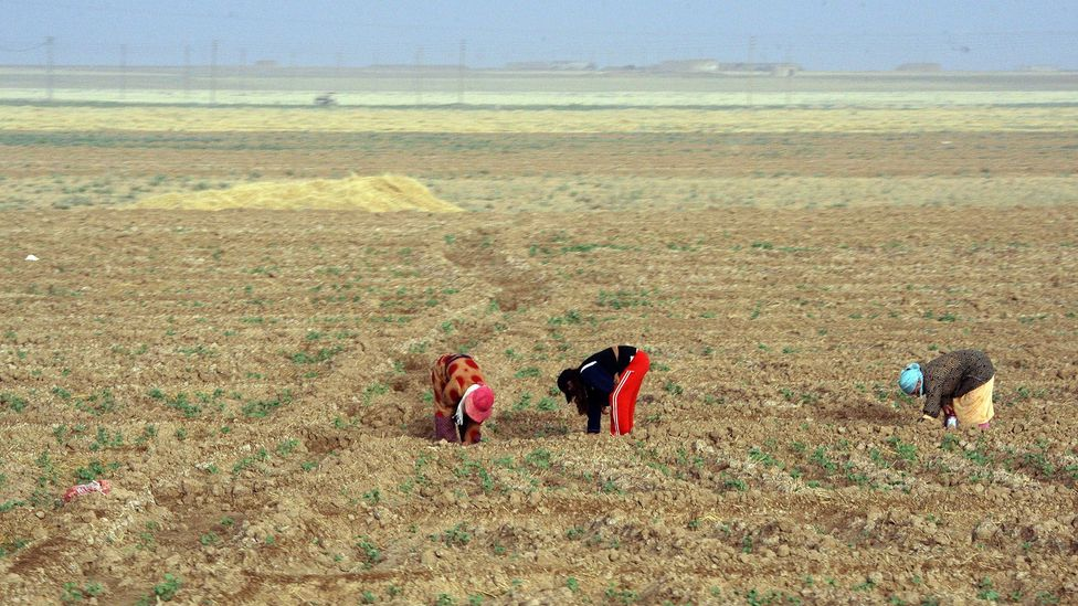 Droughts and climate change will make water-fuelled diplomacy a crucial exercise in the 21st Century. (Credit: Getty Images)