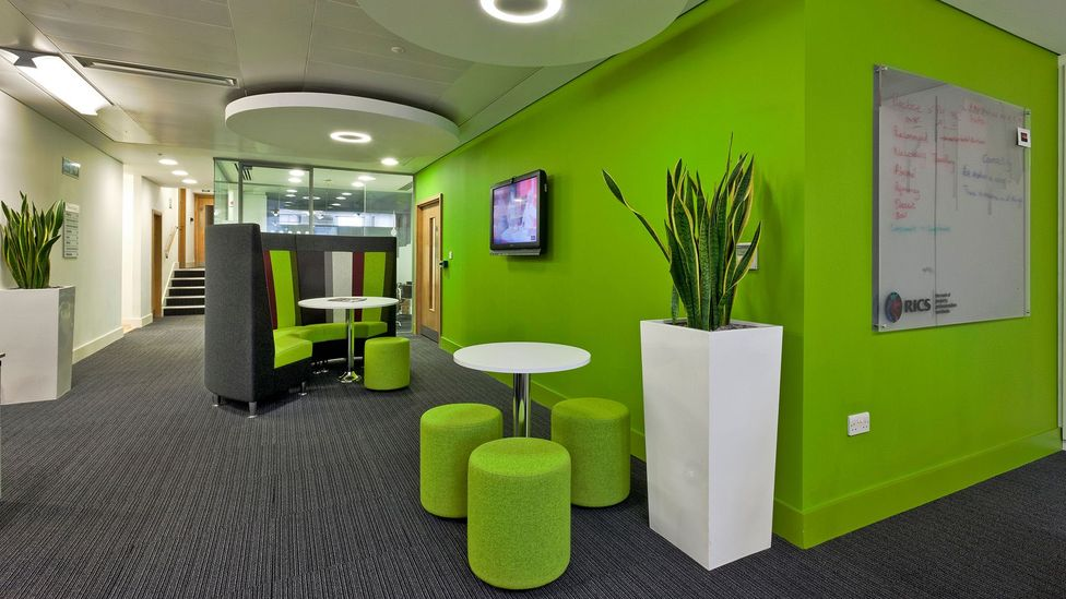 Decorating your office with a splash of green, like at the headquarters of the Royal Institution of Chartered Surveyors in London, may help creative thinking (Credit: Alamy)