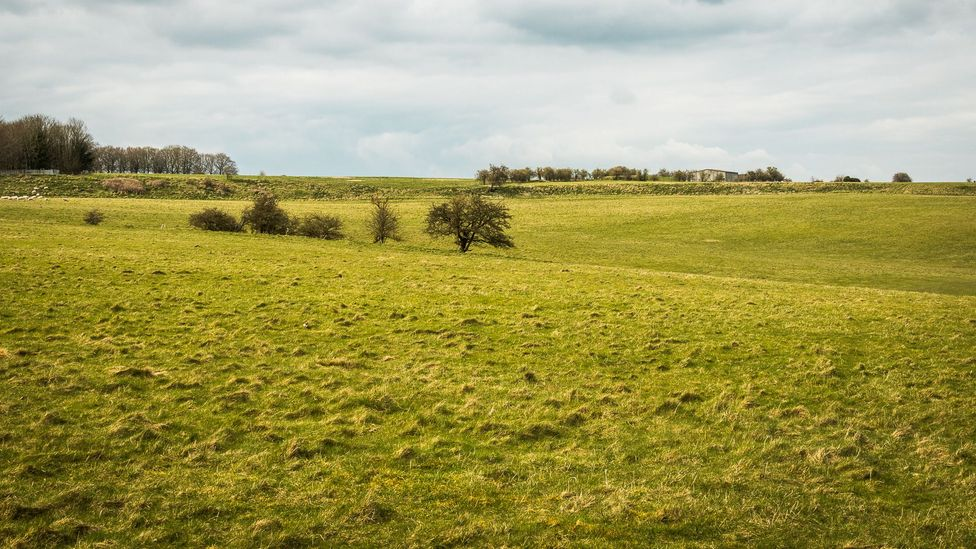 Today, Durrington Walls is a field surrounded by banks (Credit: Vivien Cumming)