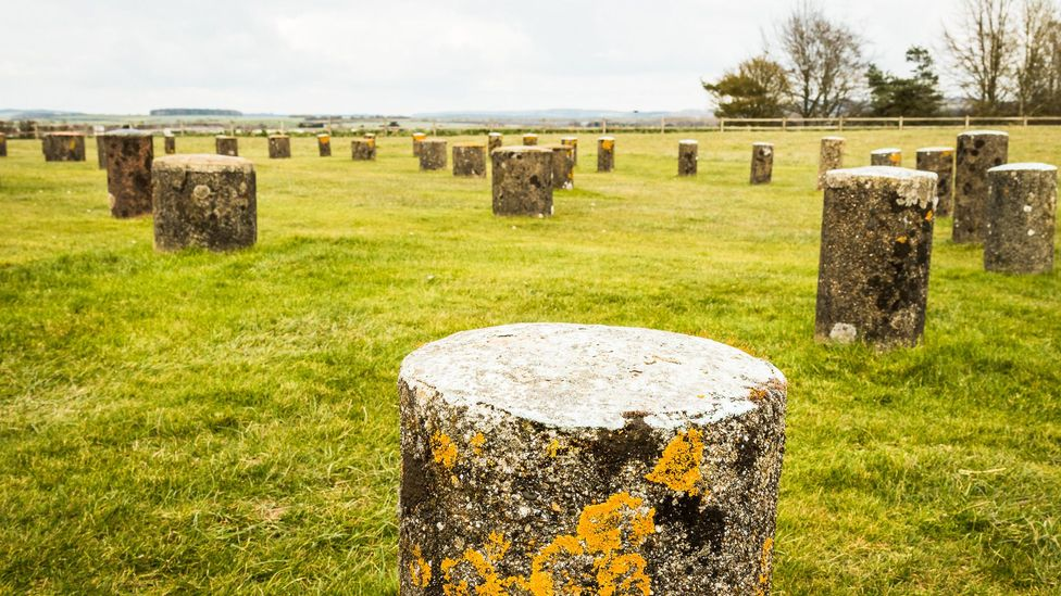 Modern stones mark where the pillars of Woodhenge, another ancient monument in the area, would have been (Credit: Vivien Cumming)