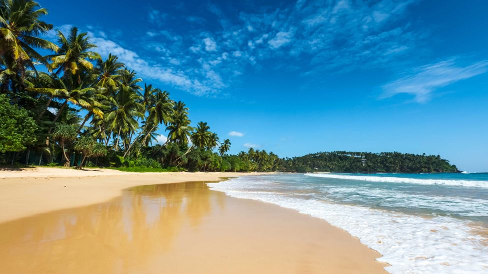 One way to think about protecting yourself is imagining your security as an island, with a beach followed by a dense jungle (Credit: iStock)