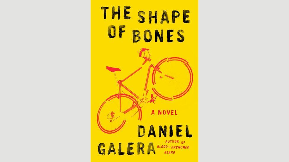 Daniel Galera, The Shape of Bones