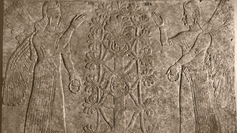 Trees have always been emblematic, as seen in this ancient engraving of winged protective spirits and the sacred tree of life. (Credit: Heritage Image Partnership Ltd/Alamy)