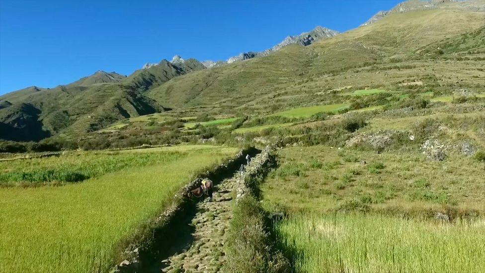 The Qhapaq Ñan Inca road network in Peru (Credit: Kevin Floerke)