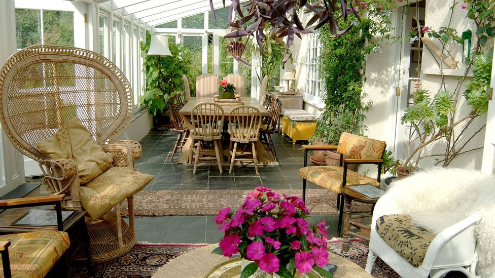 A symbol of generational ennui – or simply some plants to make the sunroom more lively? (Credit: Alamy)