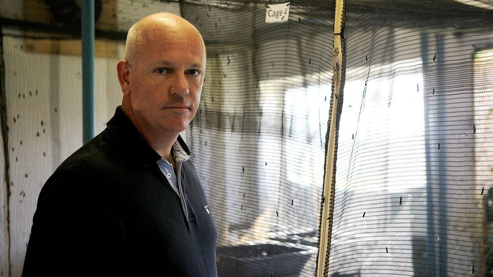 Jason J Drew, the founder of AgriProtein, stands in the fly factory that produces 90-100 tonnes of protein a day (Credit: Jenny Goldhawk-Smith/AFP/Getty Images)