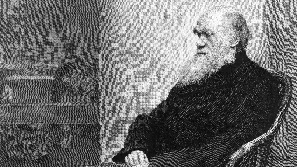 Charles Darwin popularised the view that we had emotional 'fingerprints' (Credit: Getty Images)