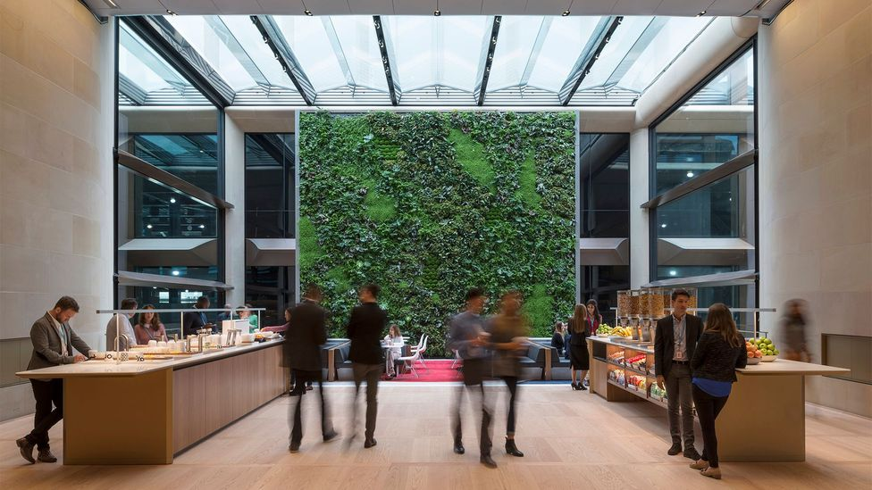The communal double-height pantry features a 'living wall' (Credit: James Newton)