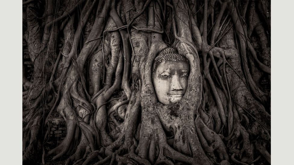 Surrounded by geometric shapes, the Buddha's mask-like face resembles a Cubist painting (Credit: Mathew Browne/ Historic Photographer of the Year)