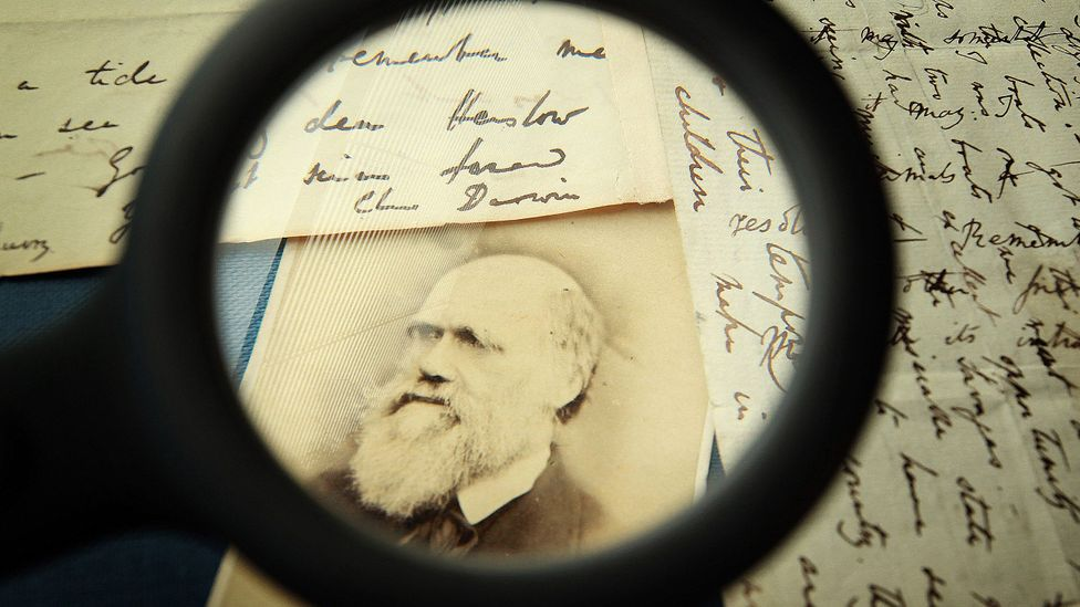 Far from failure, pivoting can lead to success. Charles Darwin first studied to become a doctor, then a parson (Credit: Getty Images)