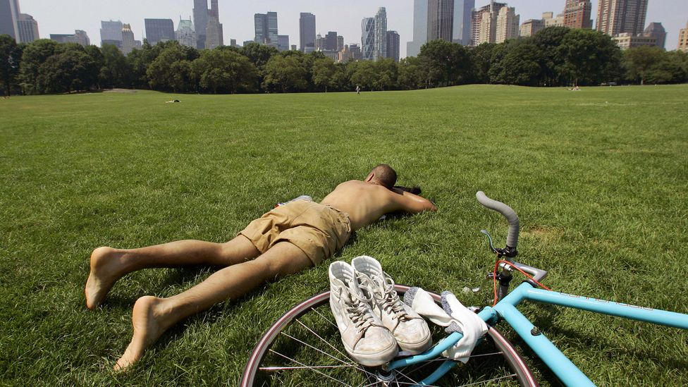 One study found businessmen who took fewer holidays in midlife were more likely to die earlier and have worse health in old age (Credit: Getty Images)