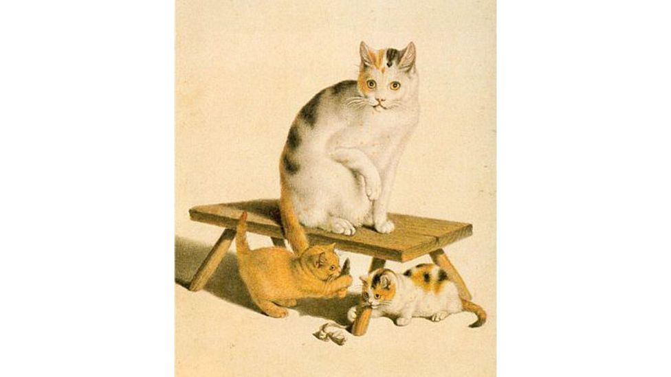 """Gottfried Mind was an """"artistic savant"""" who drew cats in extraordinary detail (Credit: Alamy)"""