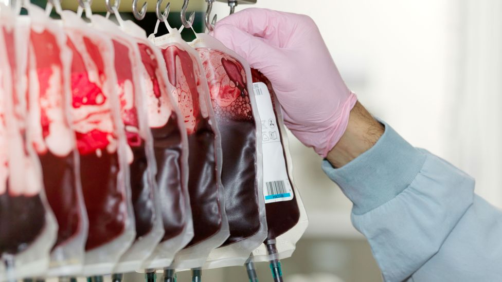 Could blood transfusions from the young slow ageing? (Credit: Getty Images)