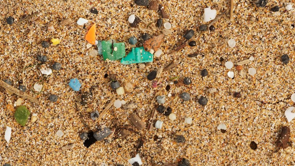The dawn of the Anthropocene could be marked by the rise of microplastics in the environment (Credit: Alamy)
