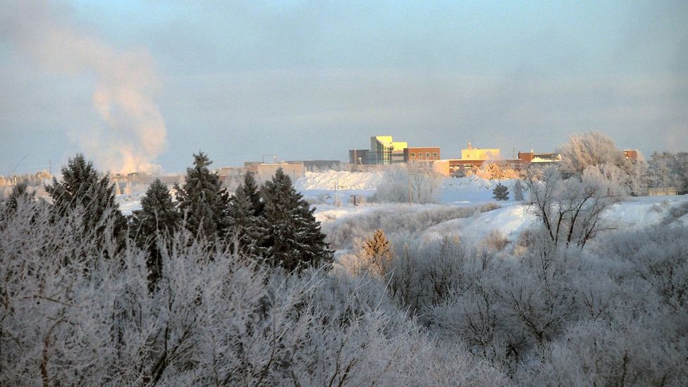During winter, temperatures in Saskatchewan can drop to as low as -40C (Credit: Fotos by Gerry Marchand/Getty Images)