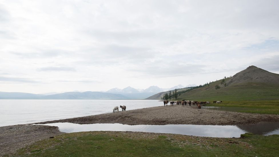 Microplastics are even found in remote places, like Lake Hovsgol in Mongolia (Credit: Alamy)