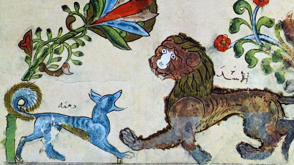 Arab artists have long illustrated stories from the Panchatantra such as this drawing of the jackal Dimnah and the lion Pingalaka (Credit: Alamy)