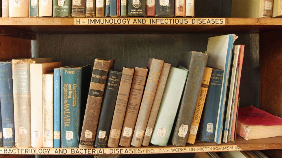 Old books on a shelf in the Amani library (Credit: Rachel Nuwer)