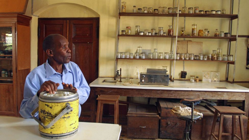 Technician John Mganga, hired in 1971, in Amani's Central Laboratory (Credit: Rachel Nuwer)