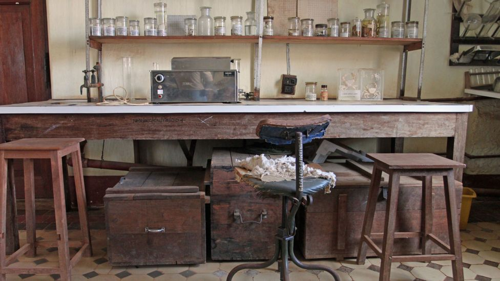A bench and equipment in the Central Laboratory (Credit: Rachel Nuwer)
