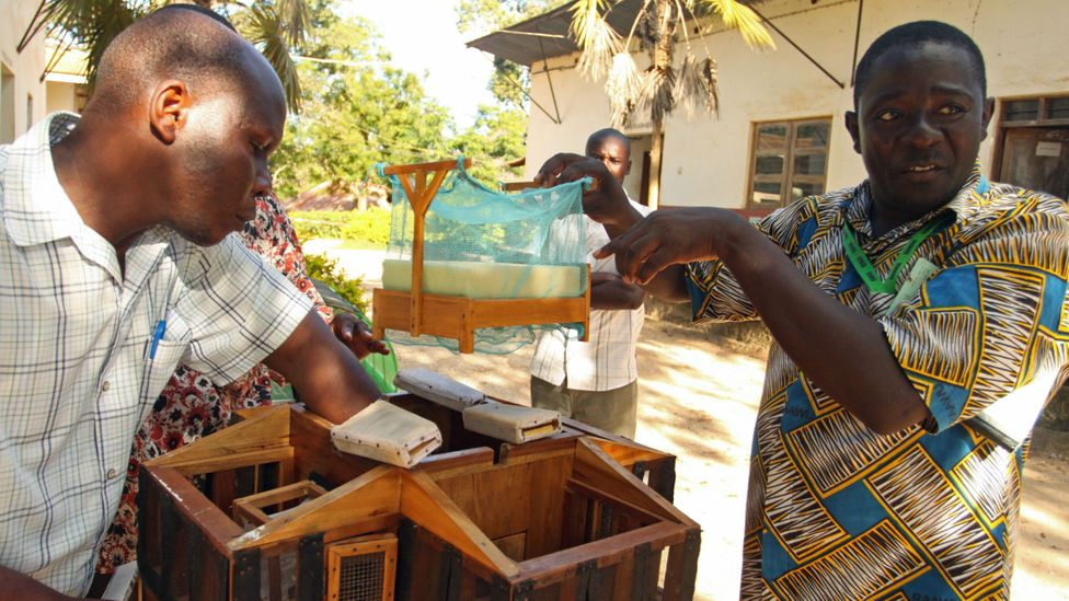 Wema Sudi, with a model home he built to help design mosquito prevention field trials (Credit: Rachel Nuwer)