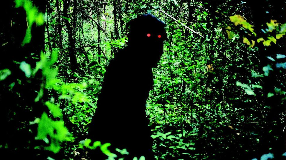 There's an element of the supernatural in many of Apichatpong's films, often manifesting as strange creatures that reveal something about ordinary people (Credit: Alamy)