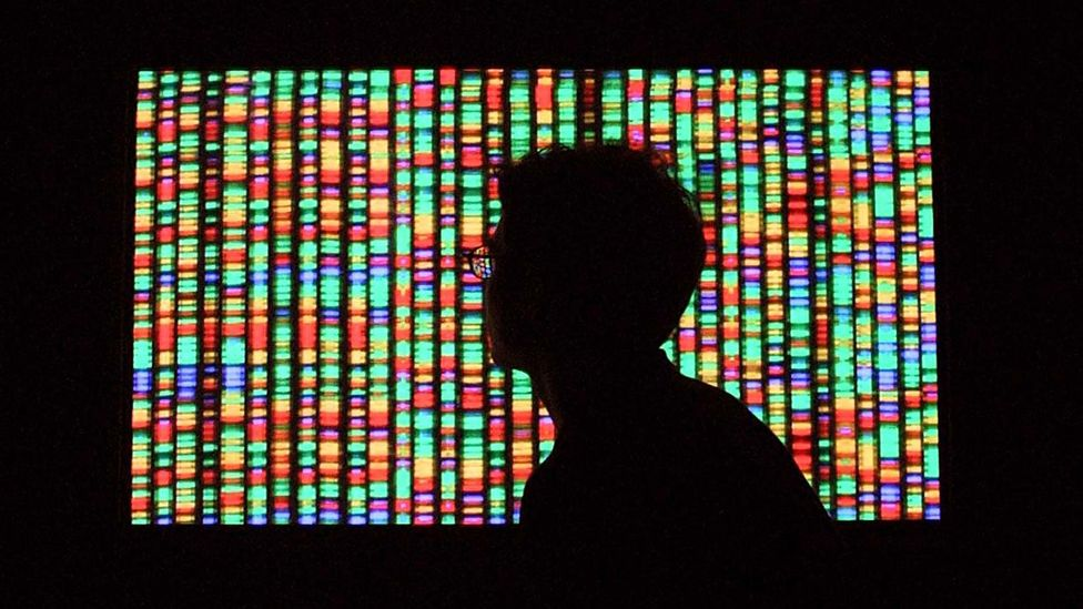 Genes shape much of who we are, but they are not the only factor (Credit: Getty Images)