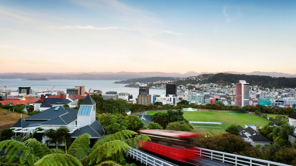 The research shows that green spaces are good for urban dwellers, which should be welcome news to residents of Wellington, New Zealand (Credit: Getty Images)