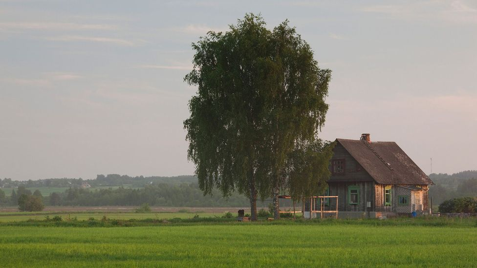 Many Latvians express a strong love for nature and romanticise the image of the traditional homestead (Credit: Danita Delimont/Getty Images)