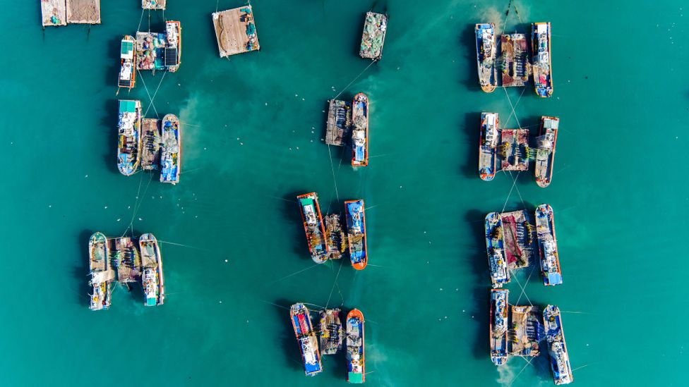South Korean fishing vessels (Credit: Getty Images)
