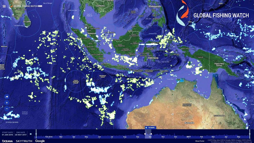 Indonesia recently opened up its private vessel tracking data, shown in green (Credit: Oceana/Global Fishing Watch)