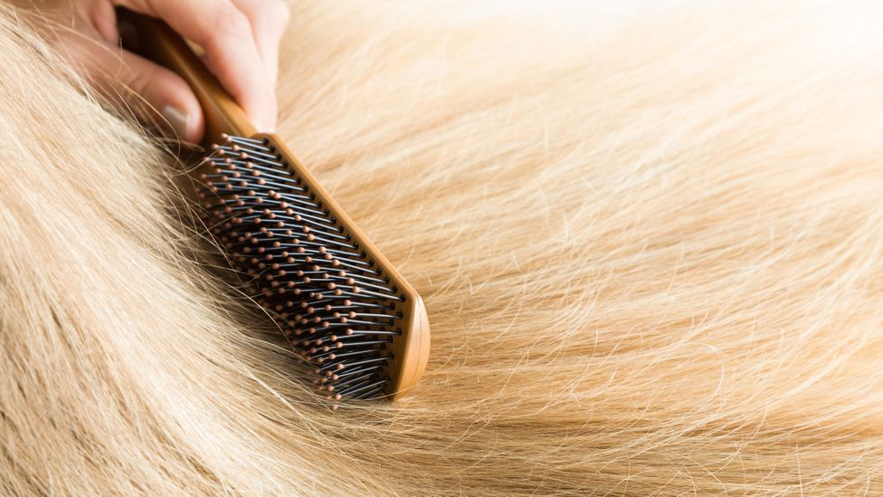 ASMR videos show everything from people caressing different objects to brushing their hair (Credit: Getty Images)
