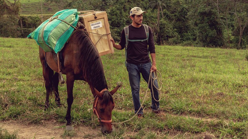 Supplies have to be carried up steeps paths by mules (Credit: Sergio Fabara)