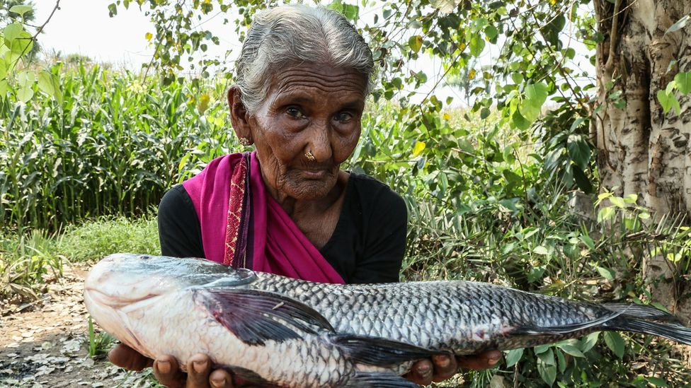 Mastanamma, a great-grandmother aged 107, is a YouTube sensation who teaches her audience to cook (Credit: Getty Images)