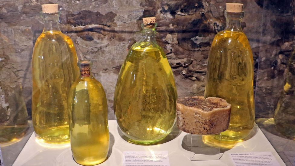 The Quakers who first settled the area discovered that whale fat could be rendered into smokeless, scentless, beautiful lamp oil (Credit: Mike MacEacheran)