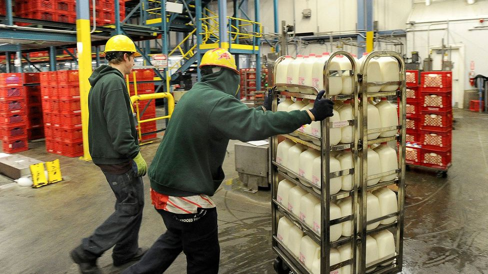 Workers load milk onto trucks at the Oakhurst dairy plant in 2013 (Credit: Getty Images)