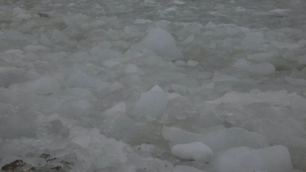 Ice (Credit: Simón Vargas/Pablo Arias/Tres Tercios)