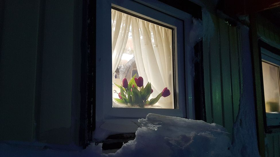 Window with flower (Credit: Sergio Cubillos)