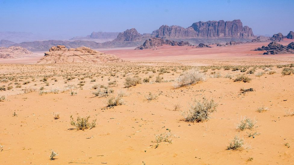 In parts of the desert, you can see white, yellow, red and purple sand all at once (Credit: Amanda Ruggeri)
