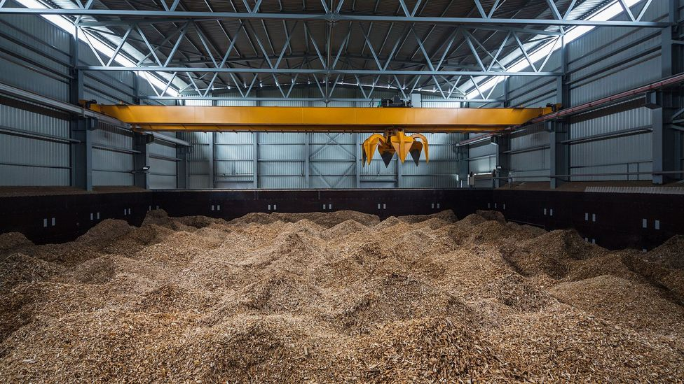 To generate electricity from biomass, food chips are crushed into powder, which is then fed into the incinerator (Credit: Getty Images)