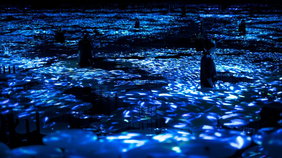 The Way of the Sea in the Memory of Topography – Colours of Life (Credit: Mori Building Digital Art Museum/teamLab Borderless, 2018, Odaiba, Tokyo)