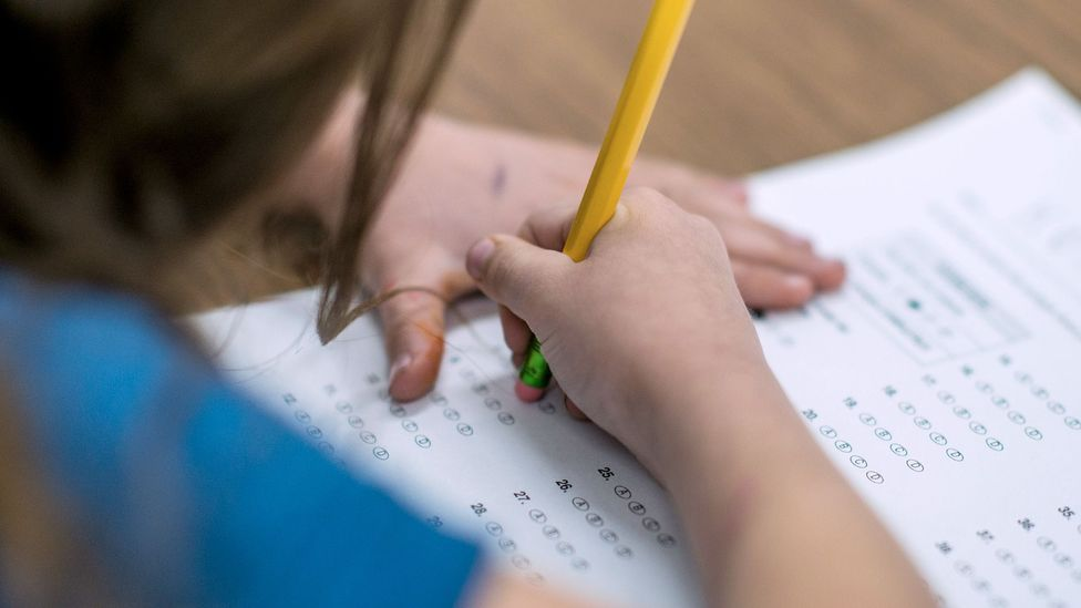 When a twin's grades increased or dropped, researchers found that the change was largely due to environmental factors like having a different teacher (Credit: Getty Images)