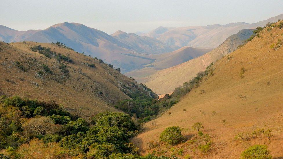 South Africa's Makhonjwa Mountains date back 3.57 billion years