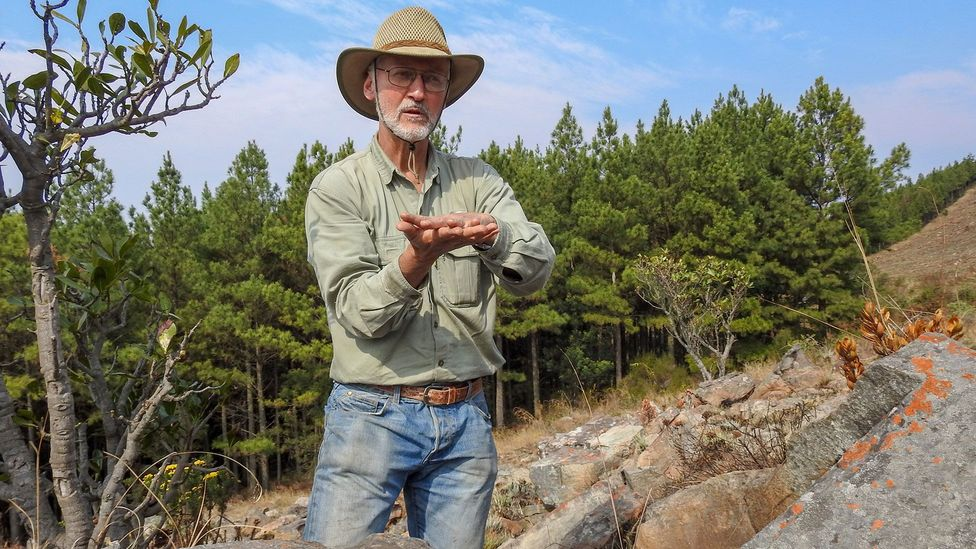 The Barberton-Makhonjwa Geotrail details Earth's geological evolution
